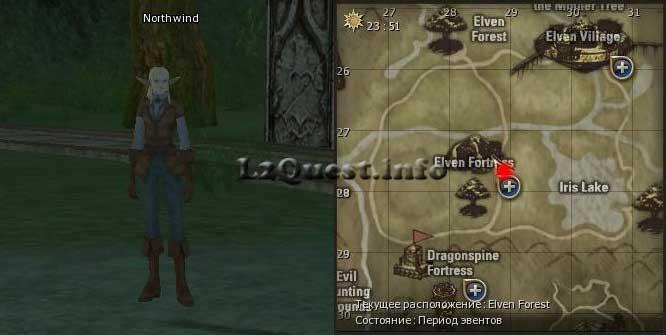 Квест на Elven Wizard | npc Northwind