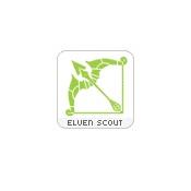 Квест на elven scout